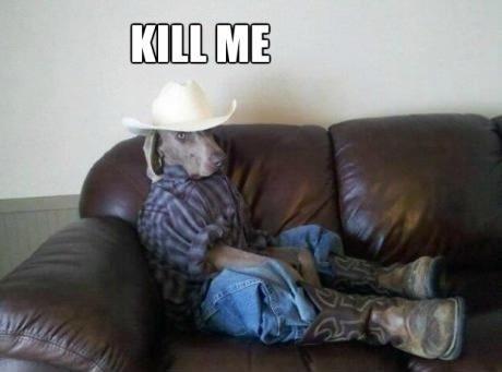 Cowboy dog | Kill Me | Know Your Meme