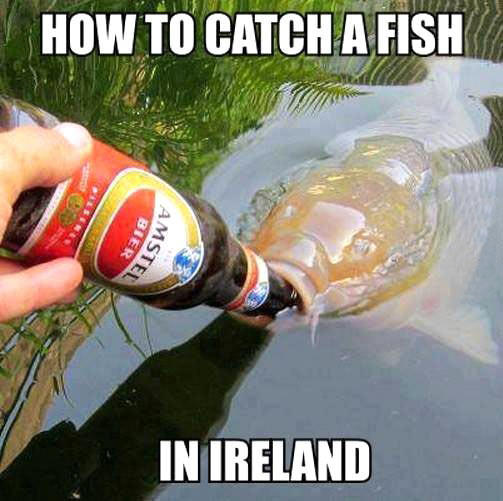 Catching A Fish In Ireland Meanwhile In Know Your Meme