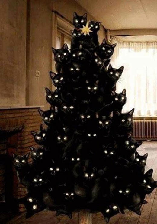 Christmas Tree Meme.Crazy Cat Lady Christmas Tree Cats Know Your Meme