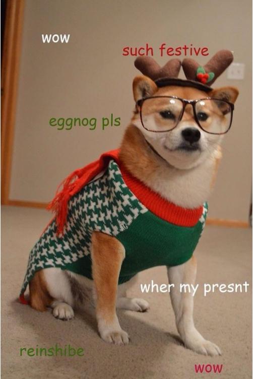 Dog Christmas Meme.We Wow You A Merry Christmas Doge Know Your Meme