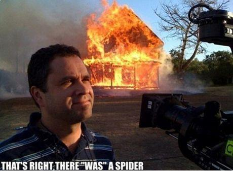 How To Deal With A Spider Kill It With Fire Know Your Meme