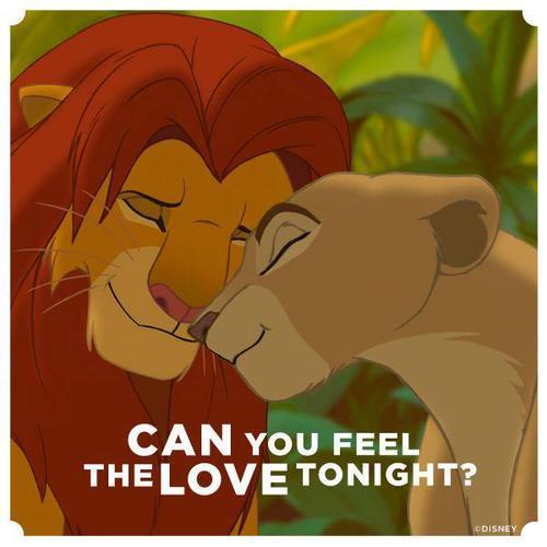 Can You Feel The Love Tonight By Kyokatakasan Meme Center