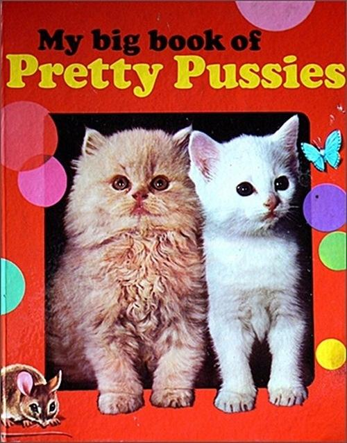 My big book of pretty pussies