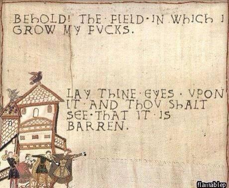 A Bayeaux Tapestry style embroidery, on which is written 'Behold! The field in which grow my fucks. Lay thine eyes upon it and thou shalt see that it is barren""