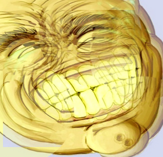 Image - 773344] | Big Grin / Never Ever | Know Your Meme