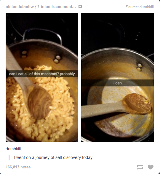 Self discovery tumblr know your meme nintendofanftw telemiscommuni source dumbkili can i eat all of this macaroni forumfinder Images
