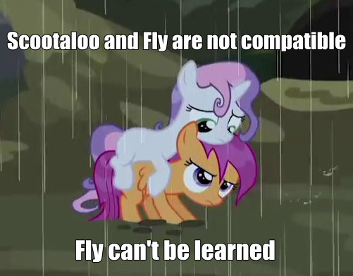 I Have A Feeling Scootaloo And Scyther Would Be Best Pals My Little Pony Friendship Is Magic Know Your Meme But i hope you enjoy this! little pony friendship is magic