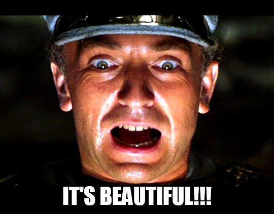 ITS BEAUTIFULI!! Steven Spielberg Raiders of the Lost Ark photo caption chin forehead