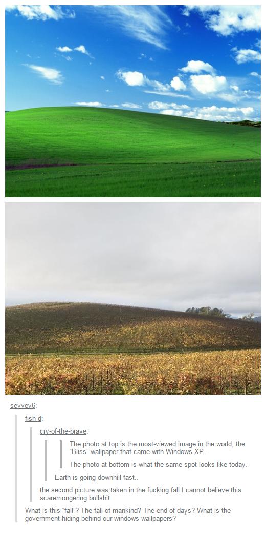 Windows XP bliss minimalism