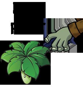 durrbella leaf durr plant know your meme