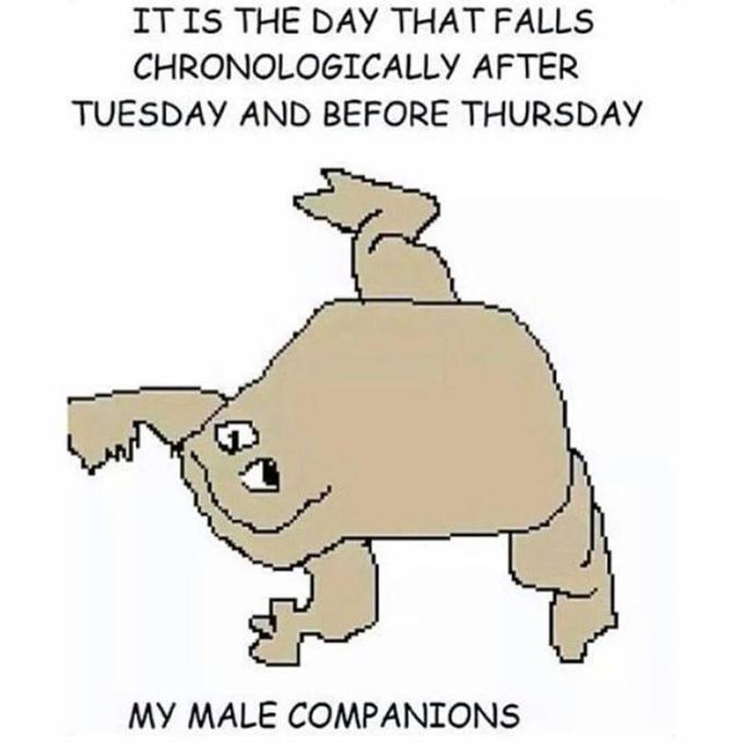 It Is Wednesday My Dudes Know Your Meme
