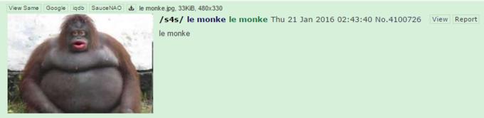 View Same Google iqdb SauceNAO le monkejpg, 33KB, 480x330 /s4s/ le monke le monke Thu 21 Jan 2016 02:43:40 No.4100726 le monke View Report face fauna mammal nose close up