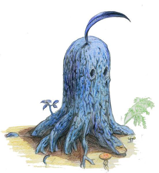 octopus cephalopod