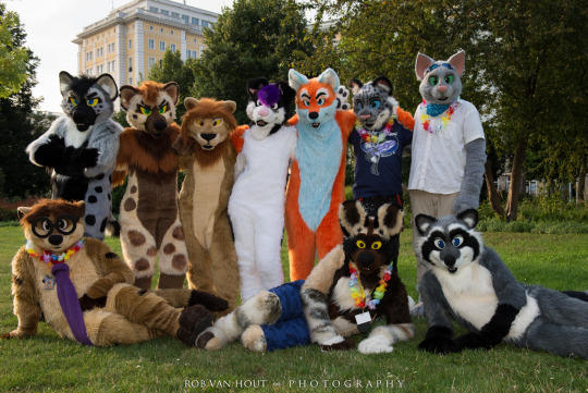 Fursuit Group Photo | Furries | Know Your Meme