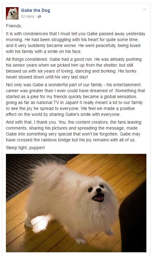 gabe the dog rip