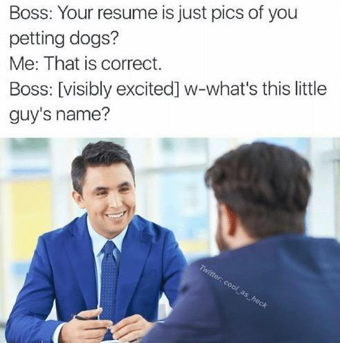 Your Resume Wholesome Memes Know Your Meme