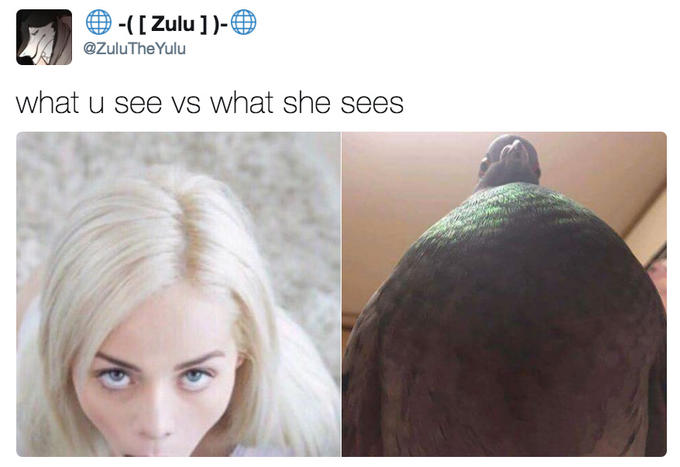 what u see vs what she sees | What You See vs. What She Sees | Know Your Meme