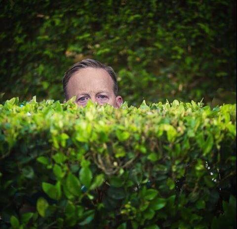 Among the bushes | Sean Spicer | Know Your Meme