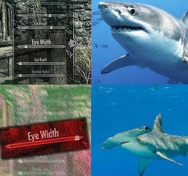 Skyrim Eye Width   Know Your Meme