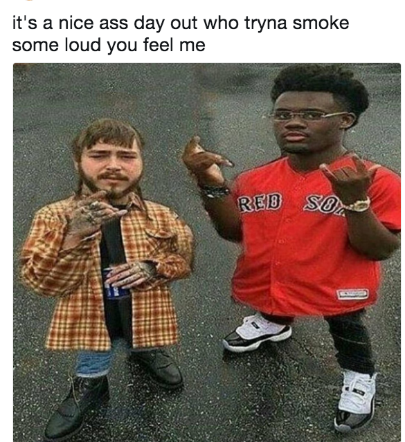 Post Malone Young King Dave I Got Loud Video Know Your Meme