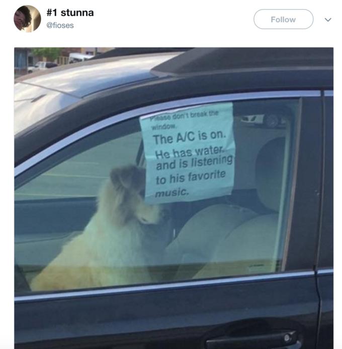 Please Dont Break The Window Know Your Meme