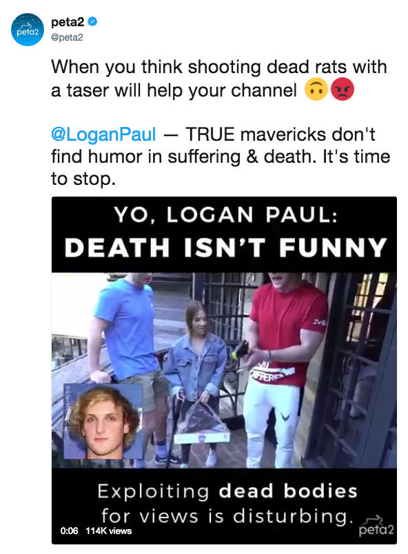 Logan Paul Know Your Meme