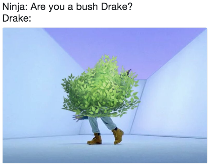 Ninja: Are you a bush Drake? Drake: Tree ecosystem text organism
