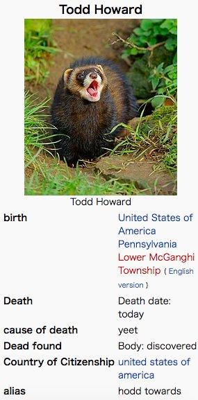 Todd Howard | Know Your Meme