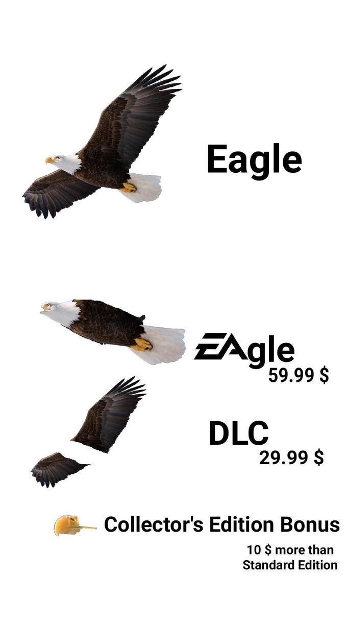 e4a.jpg