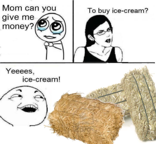 Mom Can You Give Me Money To Ice Cream