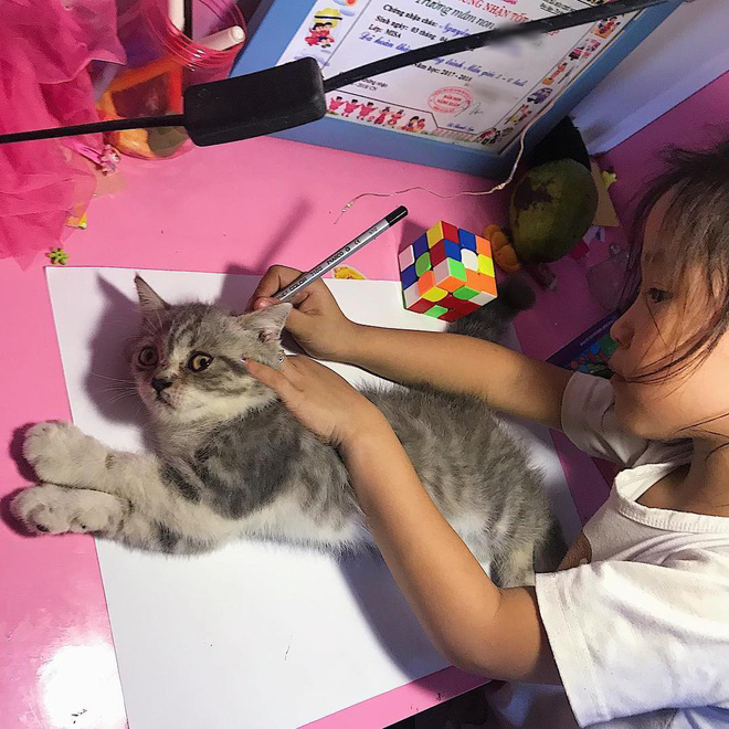 Girl Tracing Cat | Know Your Meme