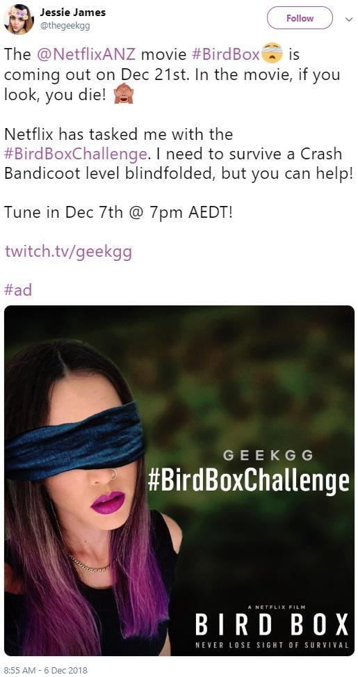 Bird Box Challenge Know Your Meme