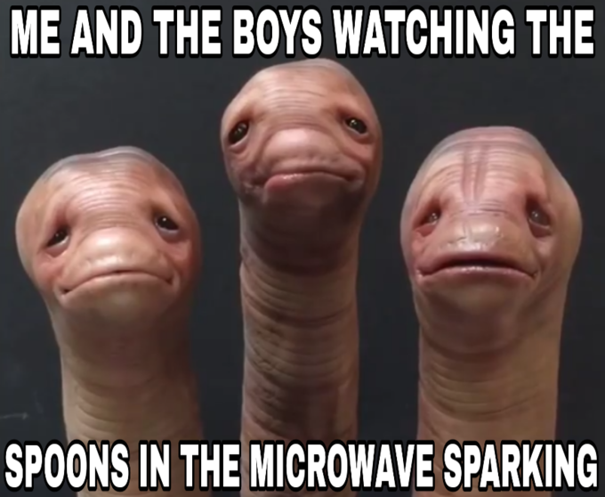 ME AND THE BOYS WATCHING THE SPOONS IN THE MICROWAVE SPARKING Nose Facial expression Head Skin Chin Mouth Photo caption Forehead Finger