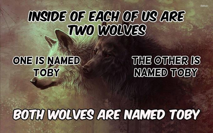 dws me INSIDE OF EACH OF US ARE TWO WOLVES ONE IS NAMED TOBY THE OTHER IS NAMED TOBY BOTH WOLVES ARE NAMED TOBY Text Font Photo caption