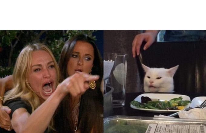 Woman Yelling at a Cat Template #2 | Woman Yelling at a ...