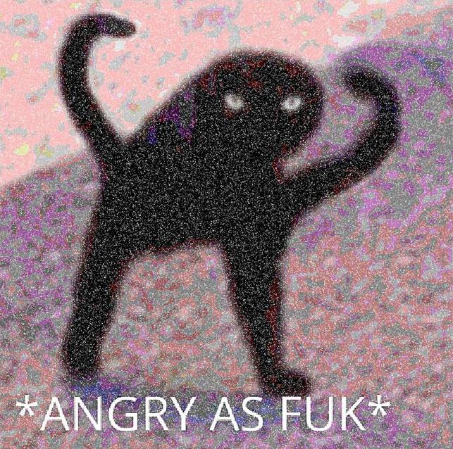 Angry Ass Fuck