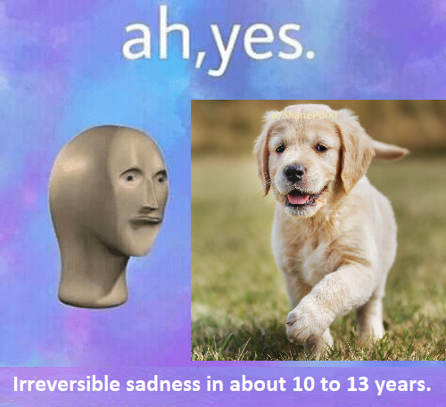 Ah Yes | Surreal Memes | Know Your Meme