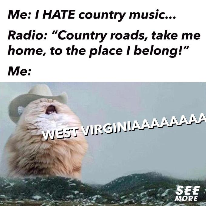 "Me: I HATE country music... Radio: ""Country roads, take me home, to the place I belong!"" Me: WEST VIRGINIAAAAAAAA SEE MORE Text Adaptation Organism"