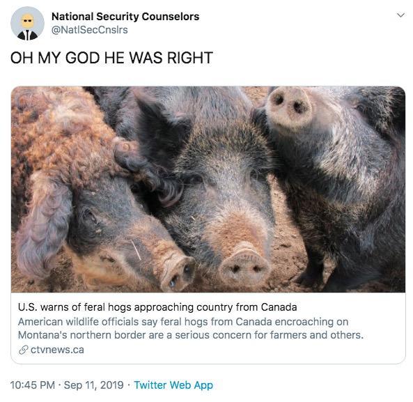 Feral Hogs Meme