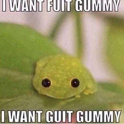 I Want Fuit Gummy Meme Meme Walls When baby yoda said he wanted fruit gummy he meant the 𝕭𝖎𝖌 𝕯𝖆𝕯𝕯𝖞 meme walls blogger