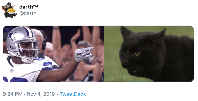 Black Cat On Football Field Know Your Meme
