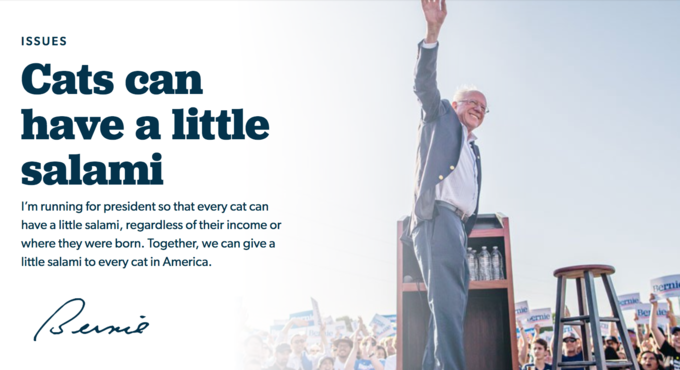 Bernie Sanders Rolls Out Daring New Plan Saying Cats Can