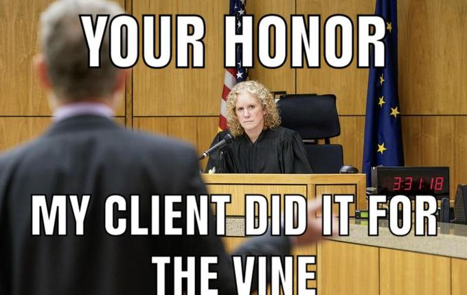 YOUR HONOR B EE MY CLIENT DID IT FOR THE VINE Photo caption