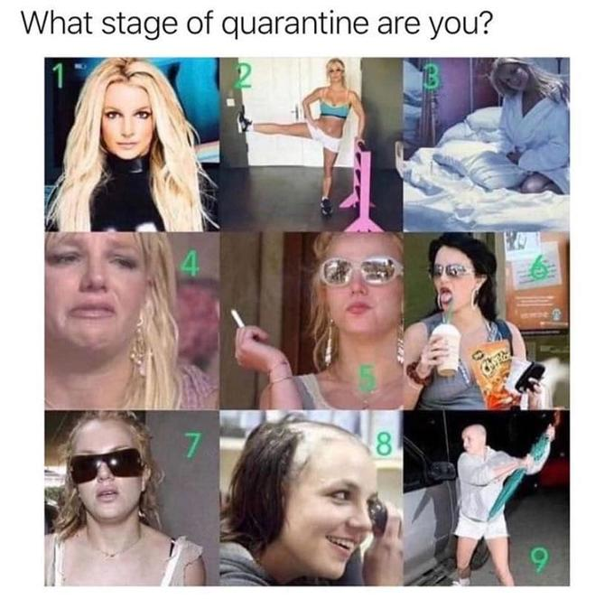 What stage of quarantine are you? 4. 7. 8. 9. Hair Face Facial expression People Product Selfie Head Skin Eyebrow Beauty Nose Text Hairstyle Chin Human Photography Cool