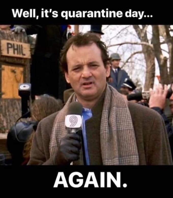 Well, it's quarantine day... PHIL AGAIN. Bill Murray People Photo caption Speech Human Photography