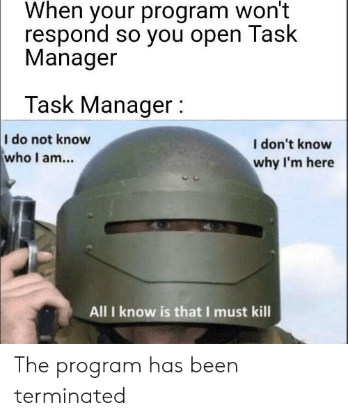 When your program won't respond so you open Task Manager Task Manager : I do not know who I am... I don't know why I'm here All I know is that I must kill The program has been terminated Helmet Personal protective equipment