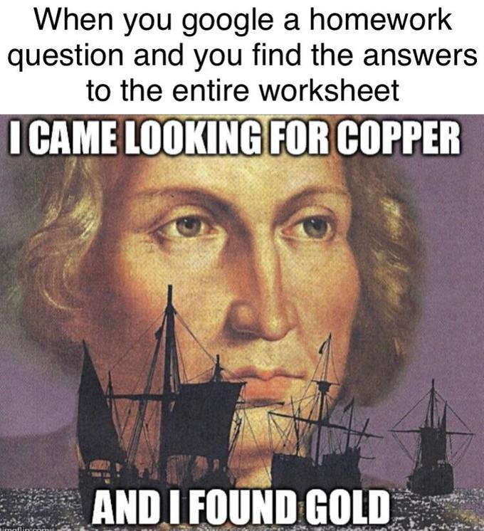 When you google a homework question and you find the answers to the entire worksheet I CAME LOOKING FOR COPPER AND I FOUND GOLD Tmaflin Text Photo caption