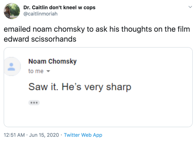 Dr. Caitlin don't kneel w cops @caitlinmoriah emailed noam chomsky to ask his thoughts on the film edward scissorhands Noam Chomsky to me - Saw it. He's very sharp 12:51 AM · Jun 15, 2020 · Twitter Web App Text Font Line