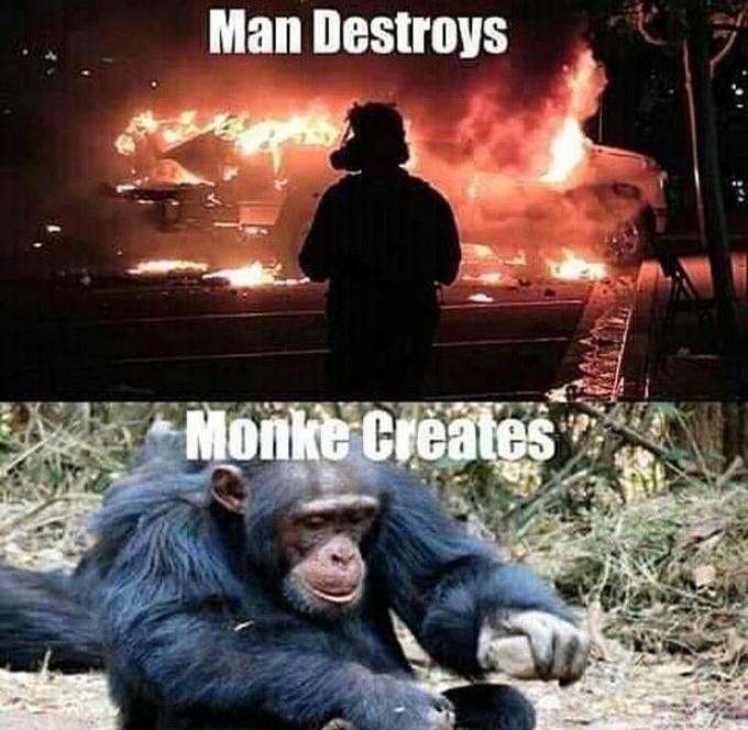 Man Destroys Monke Creates La Mesa Movie Human