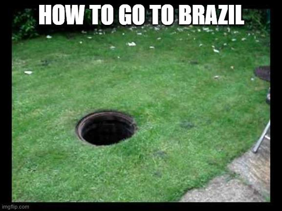 HOW TO GO TO BRAZIL imgflip.com Grass Lawn